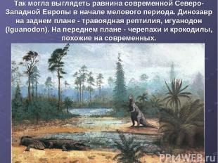 Так могла выглядеть равнина современной Северо-Западной Европы в начале мелового
