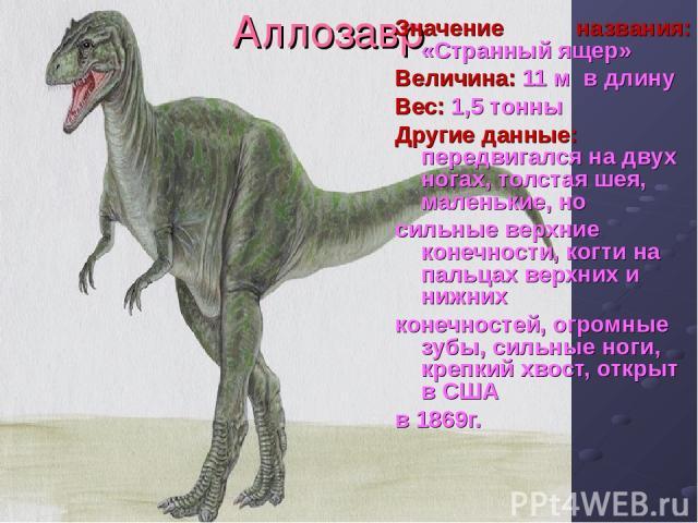 Аллозавр Значение названия: «Странный ящер» Величина: 11 м в длину Вес: 1,5 тонны Другие данные: передвигался на двух ногах, толстая шея, маленькие, но сильные верхние конечности, когти на пальцах верхних и нижних конечностей, огромные зубы, сильные…