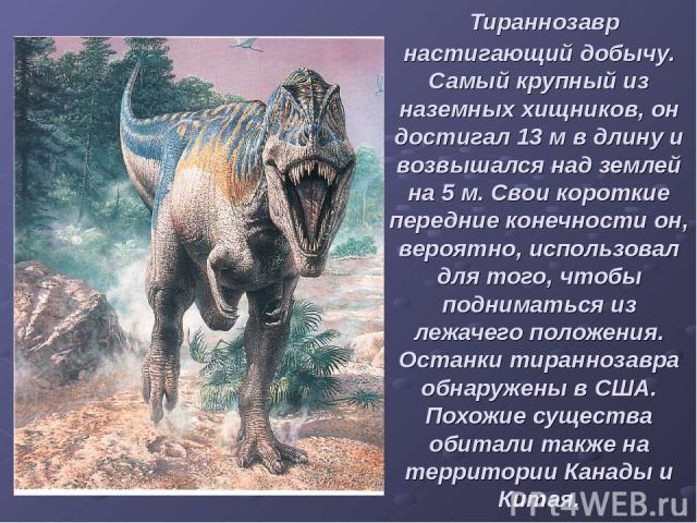 Тираннозавр настигающий добычу. Самый крупный из наземных хищников, он достигал 13 м в длину и возвышался над землей на 5 м. Свои короткие передние конечности он, вероятно, использовал для того, чтобы подниматься из лежачего положения. Останки тиран…