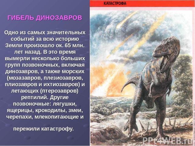 ГИБЕЛЬ ДИНОЗАВРОВ Одно из самых значительных событий за всю историю Земли произошло ок. 65 млн. лет назад. В это время вымерли несколько больших групп позвоночных, включая динозавров, а также морских (мозазавров, плезиозавров, плиозавров и ихтиозавр…