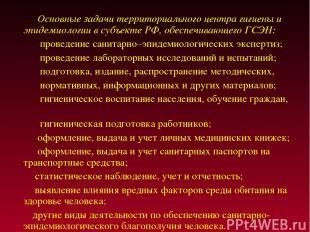 Основные задачи территориального центра гигиены и эпидемиологии в субъекте РФ, о