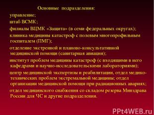 Основные подразделения: управление; штаб ВСМК; филиалы ВЦМК «Защита» (в семи фед