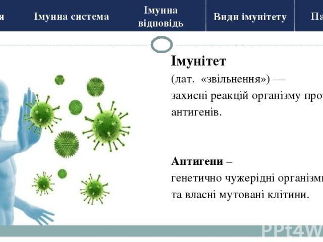 ? Імунна система 1. Кістковий мозок 2. Тимус (загрудинна залоза) 4. Апендикс 3. Мигдалики 2.Лімфатичні вузли 1. Селезінка (утворення та навчання імунних клітин) Центральні органи (тренування імунних клітин) Периферичні органи Історія Види імунітету …