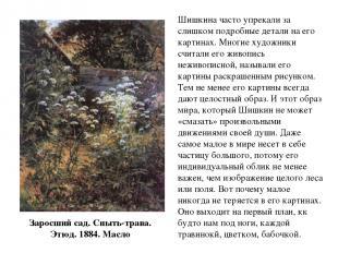 Заросший сад. Сныть-трава. Этюд. 1884. Масло Шишкина часто упрекали за слишком п