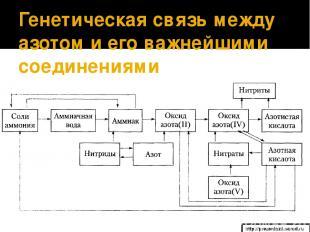 Генетическая связь между азотом и его важнейшими соединениями http://prezentazii