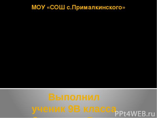 МОУ «СОШ с.Прималкинского» Выполнил ученик 9В класса Залепухин Вадим Минеральные удобрения