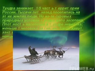 Тундра занимает 1/5 часть территории России. Тысячи лет назад поселились на этих