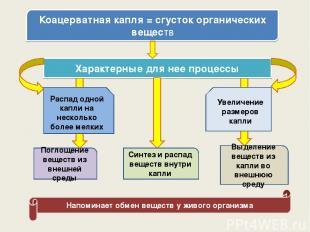 Коацерватная капля = сгусток органических веществ Характерные для нее процессы Р