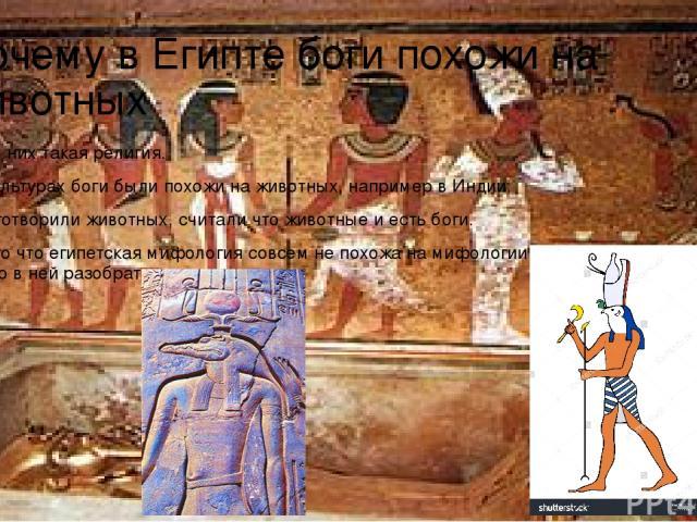 Почему в Египте боги похожи на животных Потому что у них такая религия. Во многих культурах боги были похожи на животных, например в Индии. Египтяне боготворили животных, считали что животные и есть боги. Начнем с того что египетская мифология совсе…