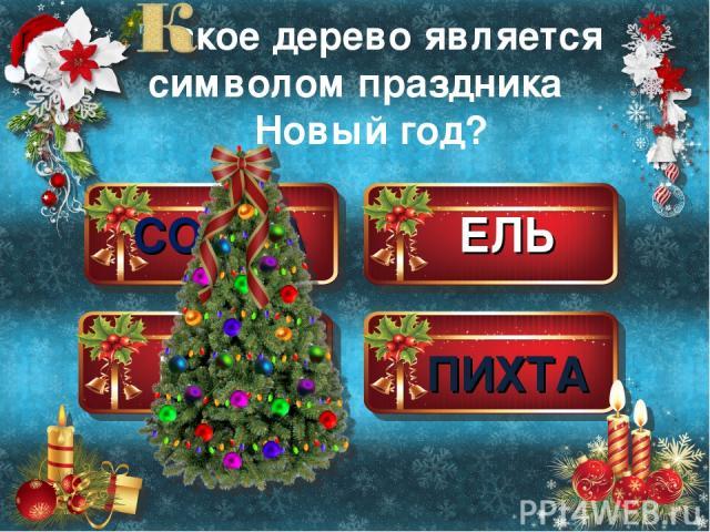 СОСНА ЕЛЬ КЕДР ПИХТА акое дерево является символом праздника Новый год?