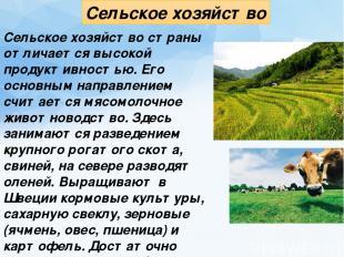 Сельское хозяйство Сельское хозяйство страны отличается высокой продуктивностью.