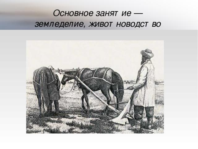 Основное занятие— земледелие, животноводство