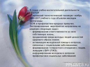 В плане учебно-воспитательной деятельности ОГБПОУ «Павловский технологический те