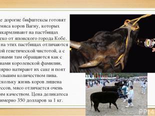 Самые дорогие бифштексы готовят из мяса коров Вагиу, которых выкармливают на пас