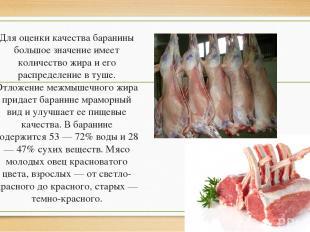 Для оценки качества баранины большое значение имеет количество жира и его распре