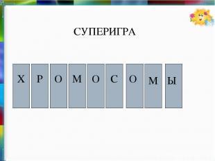Х О М О Р Ы М О С СУПЕРИГРА