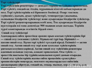 Тері туйсіктері Тері түйсігінің рецепторы — денедегі терінің өн бойына орналасқа