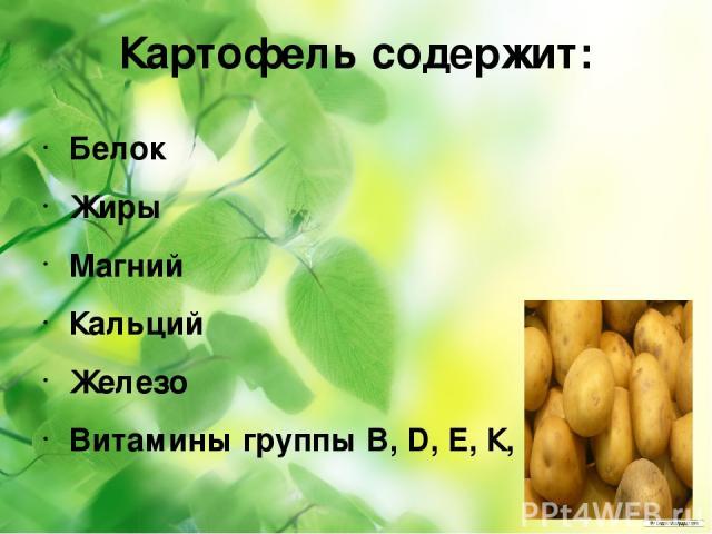 Картофель содержит: Белок Жиры Магний Кальций Железо Витамины группы B, D, Е, К, РР