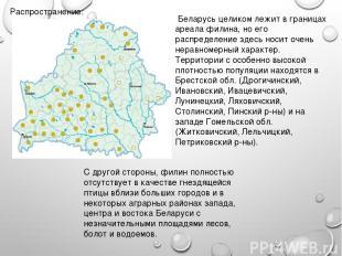 Распространение: Беларусь целиком лежит в границах ареала филина, но его распред