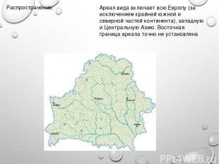 Распространение: Ареал вида включает всю Европу (за исключением крайней южной и