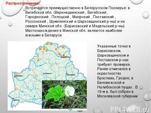 Распространение: Указанные точки в Борисовском, Шарковщинском и Поставском р-нах
