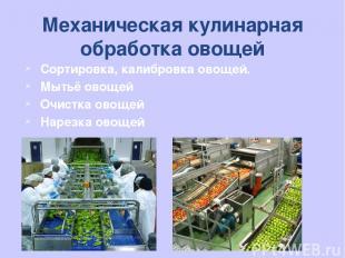 Механическая кулинарная обработка овощей Сортировка, калибровка овощей. Мытьё ов