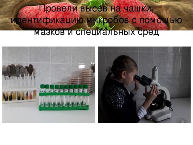 Провели высев на чашки, идентификацию микробов с помощью мазков и специальных сред