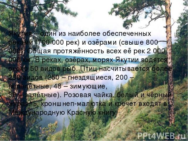 Якутия – один из наиболее обеспеченных реками (700 000 рек) и озёрами (свыше 800 000). Общая протяжённость всех её рек 2 000 000 км. В реках, озёрах, морях Якутии водятся около 50 видов рыб. Птиц насчитывается более 280 видов (250 – гнездящиеся, 200…