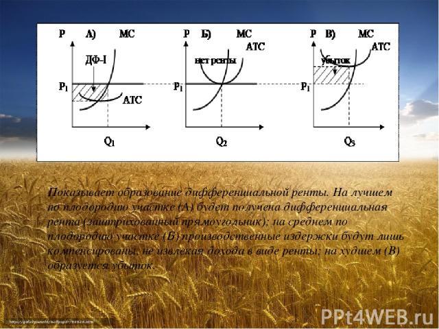 Показывает образование дифференциальной ренты. На лучшем по плодородию участке (А) будет получена дифференциальная рента (заштрихованный прямоугольник); на среднем по плодородию участке (Б) производственные издержки будут лишь компенсированы, не изв…