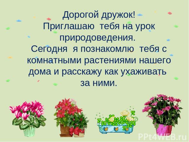 Дорогой дружок! Приглашаю тебя на урок природоведения. Сегодня я познакомлю тебя с комнатными растениями нашего дома и расскажу как ухаживать за ними.