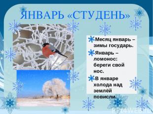 ЯНВАРЬ «СТУДЕНЬ» Месяц январь – зимы государь. Январь – ломонос: береги свой нос