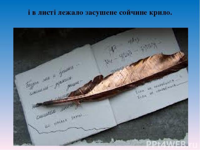 i в листi лежало засушене сойчине крило.