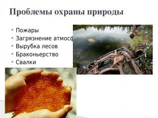 Пожары Загрязнение атмосферы Вырубка лесов Браконьерство Свалки Проблемы охраны