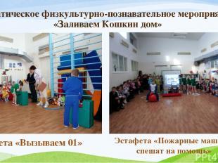 Тематическое физкультурно-познавательное мероприятие «Заливаем Кошкин дом» Эстаф