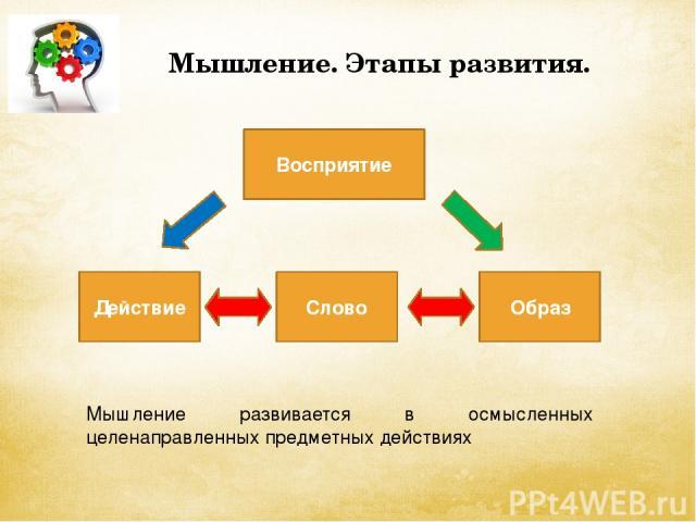 Мышление. Этапы развития. Действие Слово Образ Восприятие Мышление развивается в осмысленных целенаправленных предметных действиях