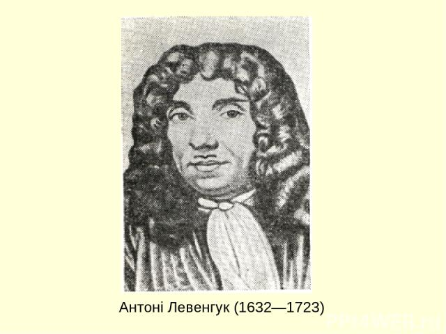 Антоні Левенгук (1632—1723)