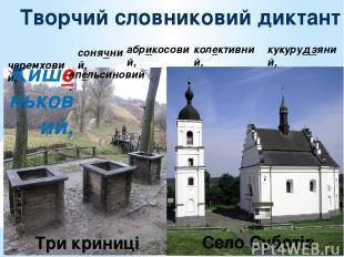Творчий словниковий диктант Кишеньковий, черемховий, кукурудзяний, колективний,