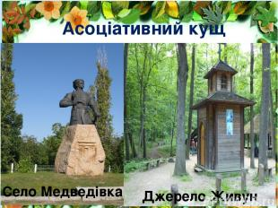 Асоціативний кущ Село Медведівка Джерело Живун