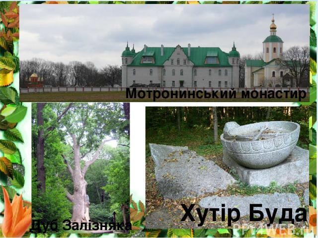 Хутір Буда Мотронинський монастир Дуб Залізняка