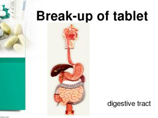 Break-up of tablet digestive tract