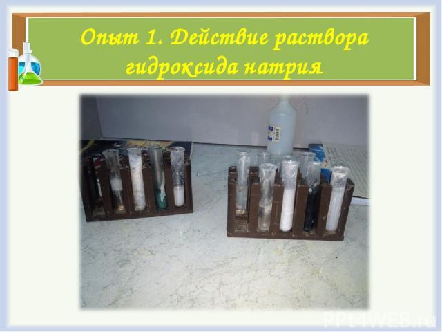 Опыт 1. Действие раствора гидроксида натрия