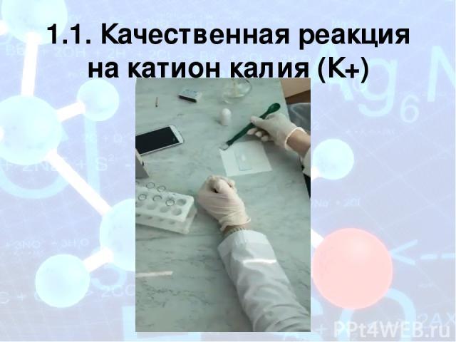 1.1. Качественная реакция на катион калия (К+)
