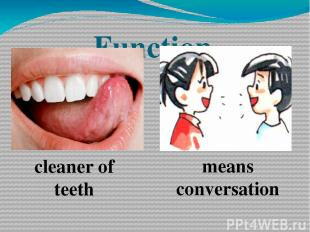 cleaner of teeth means conversation Function