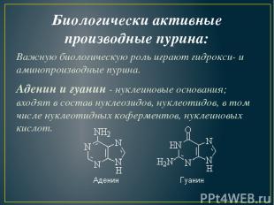 Биологически активные производные пурина: Важную биологическую роль играют гидро