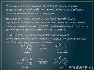 Для них, как и для гуанина, характерны таутомерные превращения между гидрокси- и