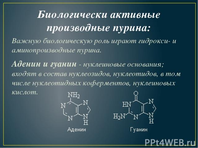 Биологически активные производные пурина: Важную биологическую роль играют гидрокси- и аминопроизводные пурина. Аденин и гуанин -нуклеиновые основания; входят в состав нуклеозидов, нуклеотидов, в том числе нуклеотидных коферментов, нуклеиновых кислот.