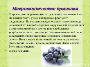 Макроскопические признаки Шаровид ные морщинистые ягоды диаметром около 5 мм. На