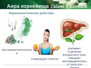 Аира корневища Calami Rhizomata Противопоказания беременность период лактации де