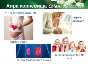 Аира корневища Calami Rhizomata Побочные действия не принимают при беременности