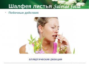 Фенхеля плоды Foeniculi fructus Фармакологическое действие отхаркивающие и спазм